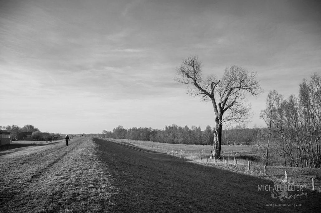 Landschaft bei Perrich (Wesel) © Michael Belter Photography