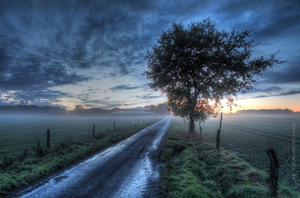 Mühlenbergweg Gartrop © Michael Belter Photography