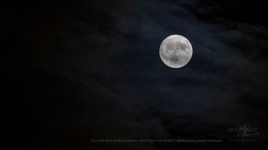 Mond © Michael Belter Photography