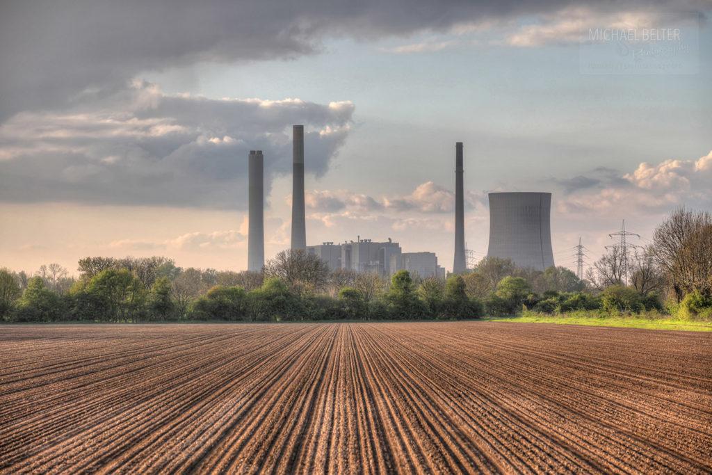Bild 01: In der Rheinaue Walsum Blick Richtung Kraftwerk Voerde
